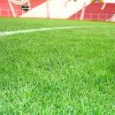 Os gramados