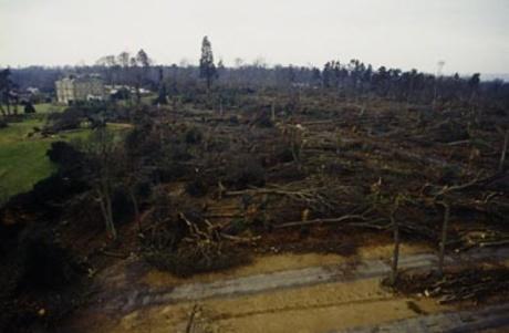 Imagem da destruição de 1987 em Emmetts Garden