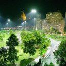 Árvores na cidade: efeitos da iluminação artificial