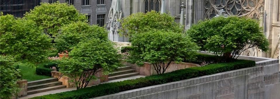 Jardins nas coberturas dos edifícios