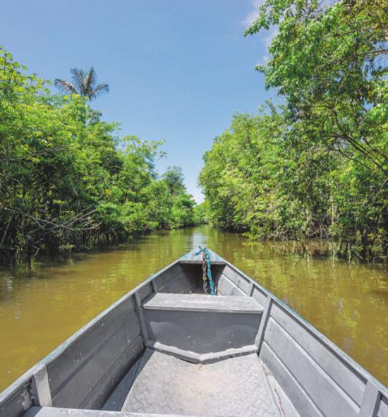 Se nossos rios não tiverem proteção, podemos ter prejuízos sérios