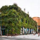 Os Jardins Verticais no Brasil